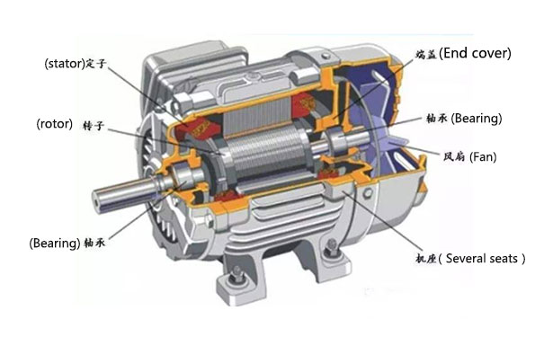 on Squirrel Cage Vs Wound Rotor Motor